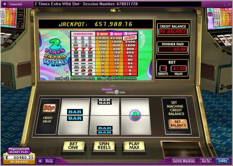2 Times Extra Wild Slot Slot Reels