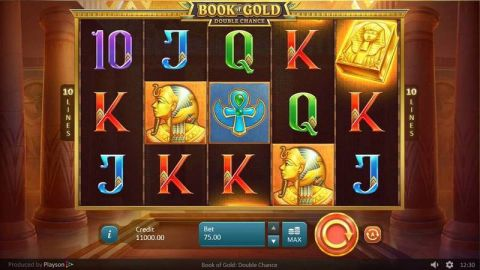 Book of Gold: Double Chance Slot Main
