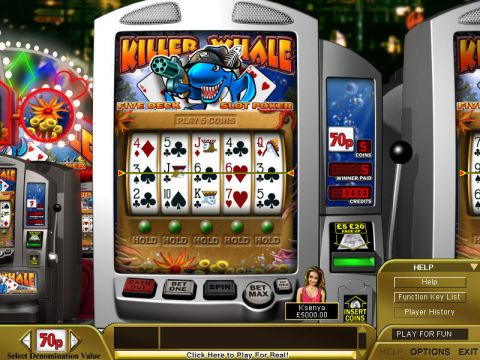 Killer Whale Poker Slot Slot Reels